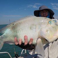 Parrot fish or Blue Bone Yum to Eat